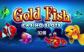 เกมตกปลาพนัน คาสิโนออนไลน์เกมส์เเนวใหม่ โบนัส 50 เปอร์เซ็นต์